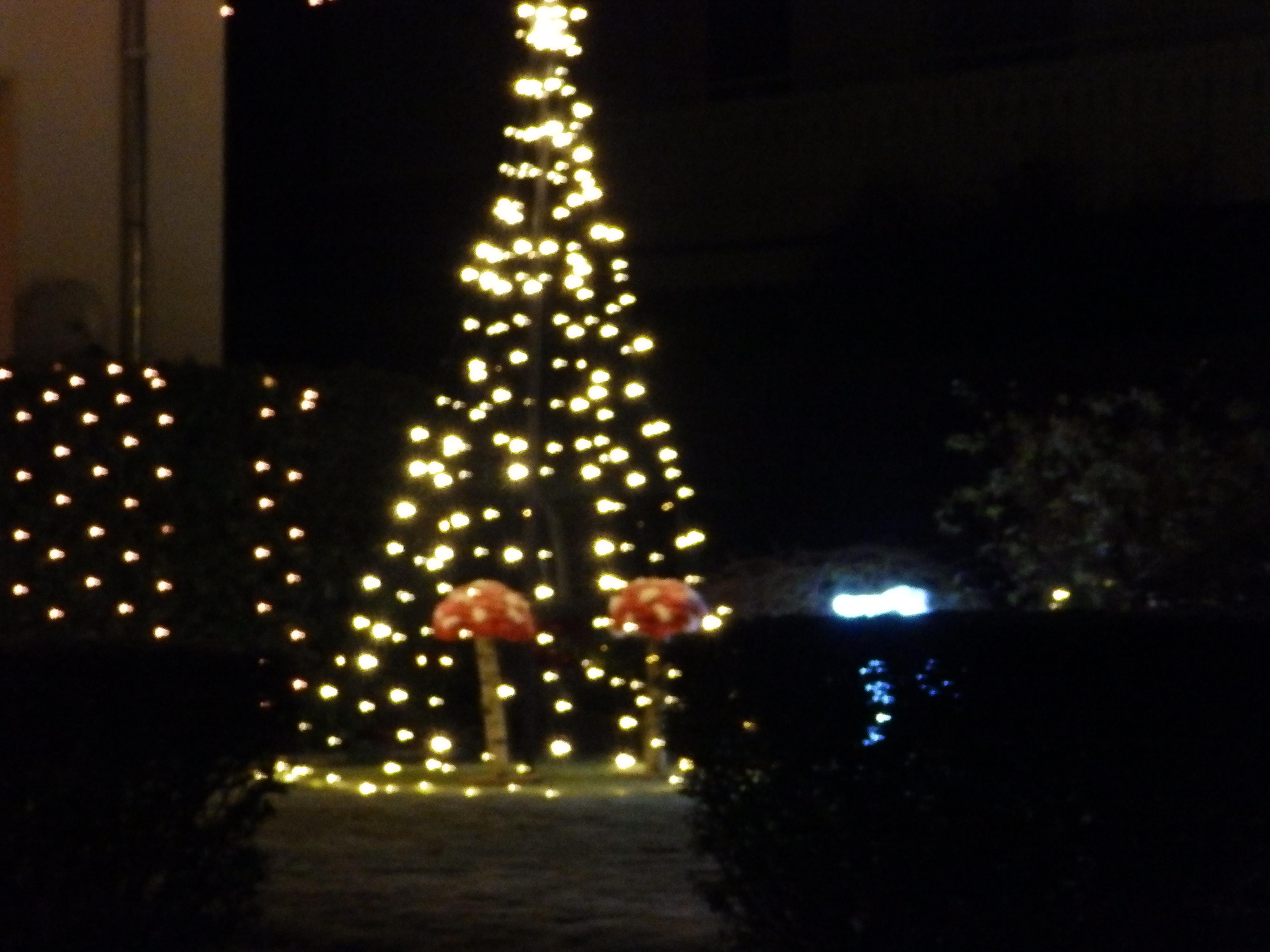 Schlagwort: Weihnachtsstimmung in Oelde - Oelder Anzeiger