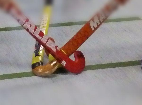 2015-02-24-Hockeyschläger