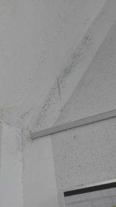 Schäden im Treppenhaus Realschule
