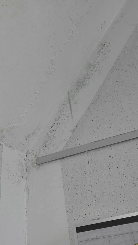 Real/ Gesamtschule Oelde Schäden im Treppenhaus